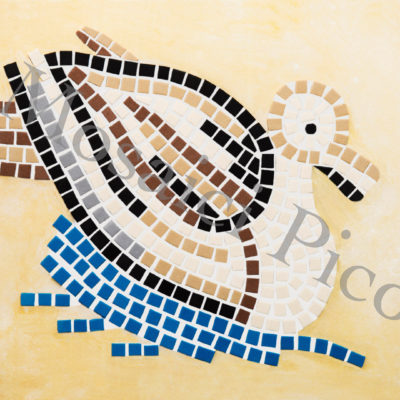 anatra mosaico