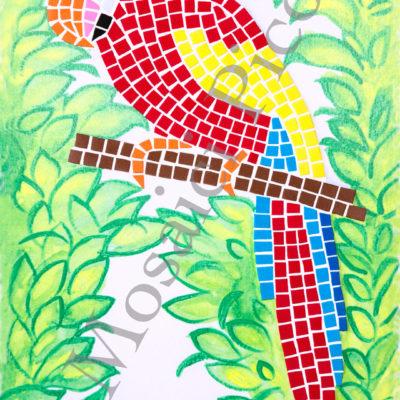 pappagallo mosaico
