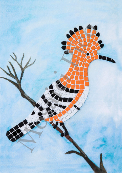 upupa mosaico